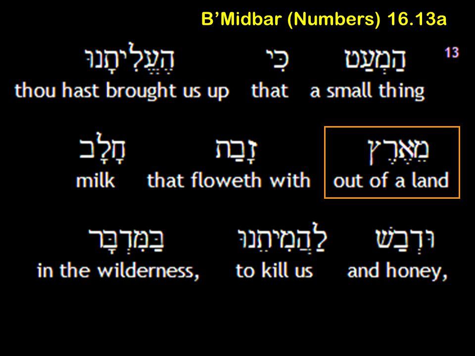 B'Midbar (Numbers) 16.13a