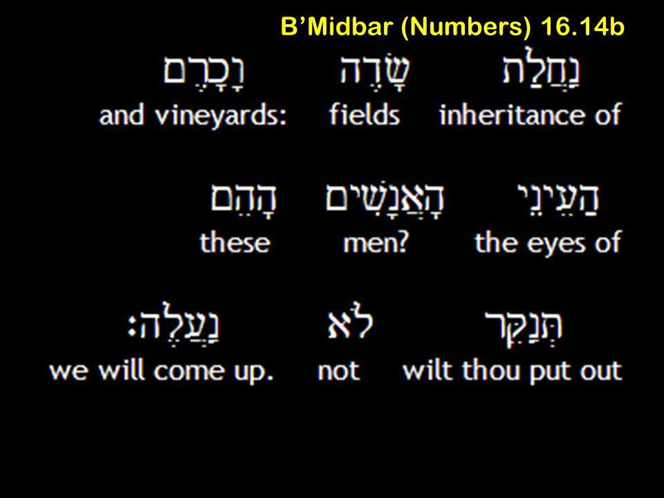 B'Midbar (Numbers) 16.14b