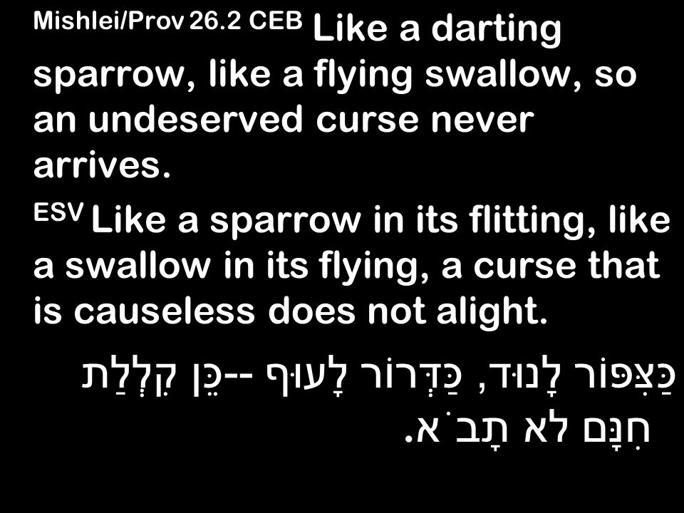 Mishlei/Prov 26.2 CEB Like a darting sparrow, like a flying swallow, so an undeserved curse never arrives.