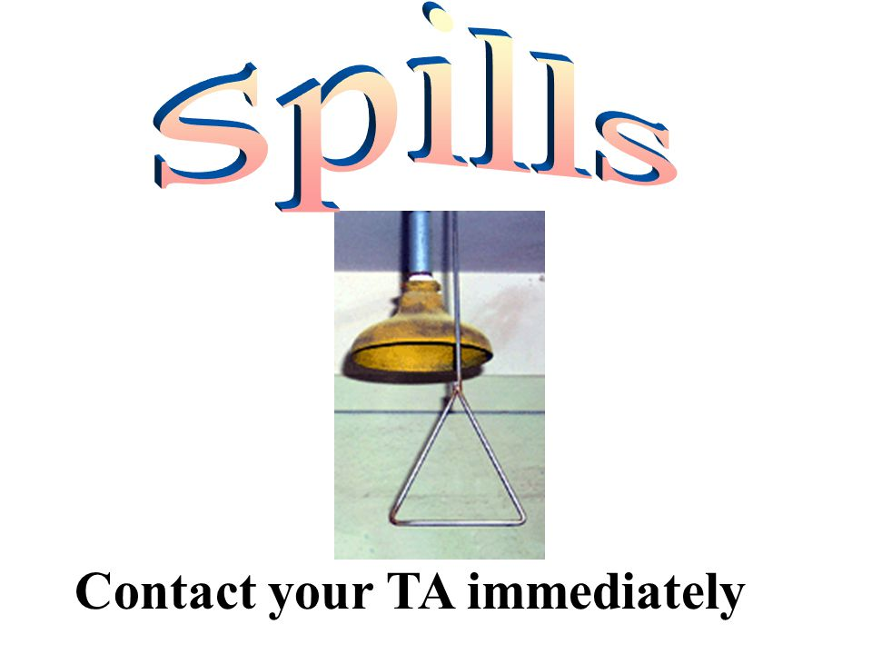 Contact your TA immediately spills