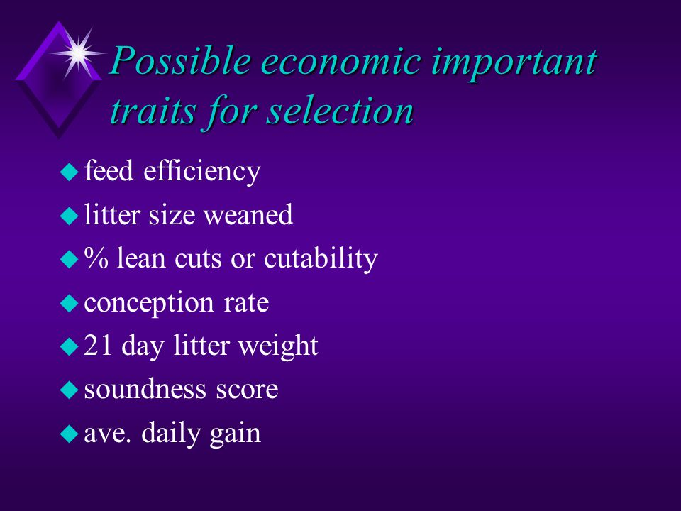 Possible economic important traits for selection u feed efficiency u litter size weaned u % lean cuts or cutability u conception rate u 21 day litter
