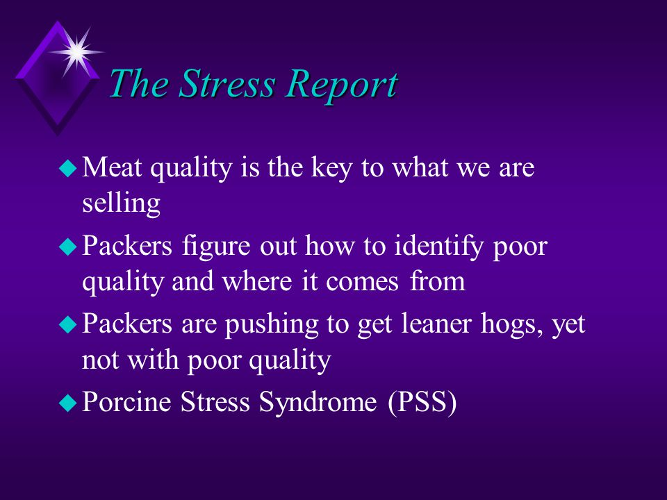 The Stress Report u Meat quality is the key to what we are selling u Packers figure out how to identify poor quality and where it comes from u Packers