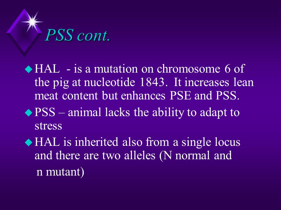 PSS cont. u HAL - is a mutation on chromosome 6 of the pig at nucleotide 1843. It increases lean meat content but enhances PSE and PSS. u PSS – animal