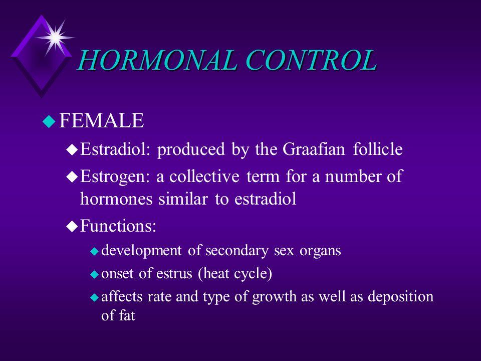 HORMONAL CONTROL u FEMALE u Estradiol: produced by the Graafian follicle u Estrogen: a collective term for a number of hormones similar to estradiol u