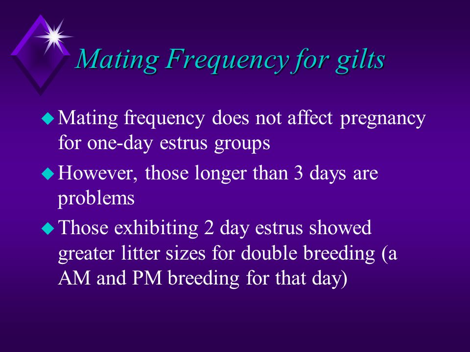 Mating Frequency for gilts u Mating frequency does not affect pregnancy for one-day estrus groups u However, those longer than 3 days are problems u T
