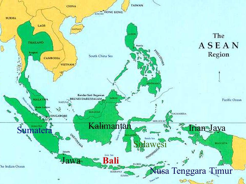 Sumatera JawaBali Kalimantan Sulawesi Nusa Tenggara Timur Irian Jaya