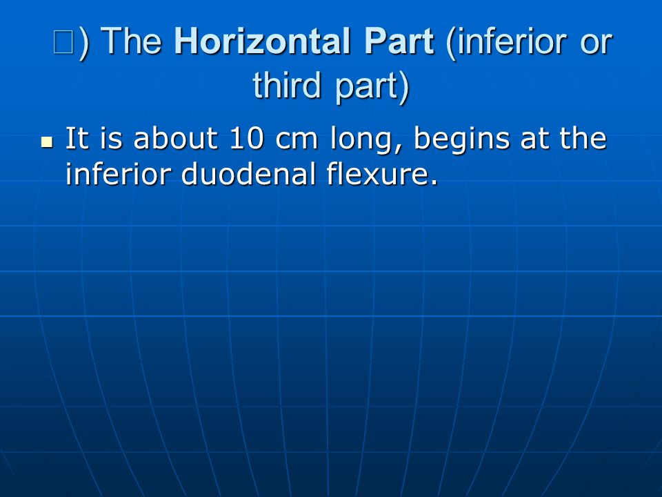 Ⅲ ) The Horizontal Part (inferior or third part) It is about 10 cm long, begins at the inferior duodenal flexure. It is about 10 cm long, begins at th
