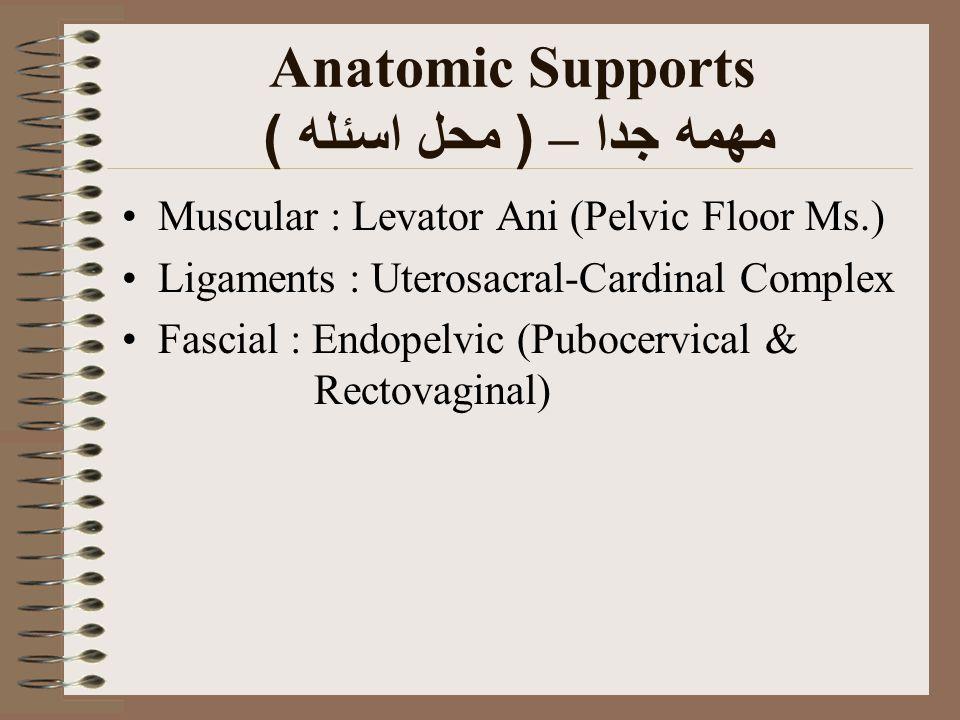Anatomic Supports مهمه جدا – ( محل اسئله ) Muscular : Levator Ani (Pelvic Floor Ms.) Ligaments : Uterosacral-Cardinal Complex Fascial : Endopelvic (Pu