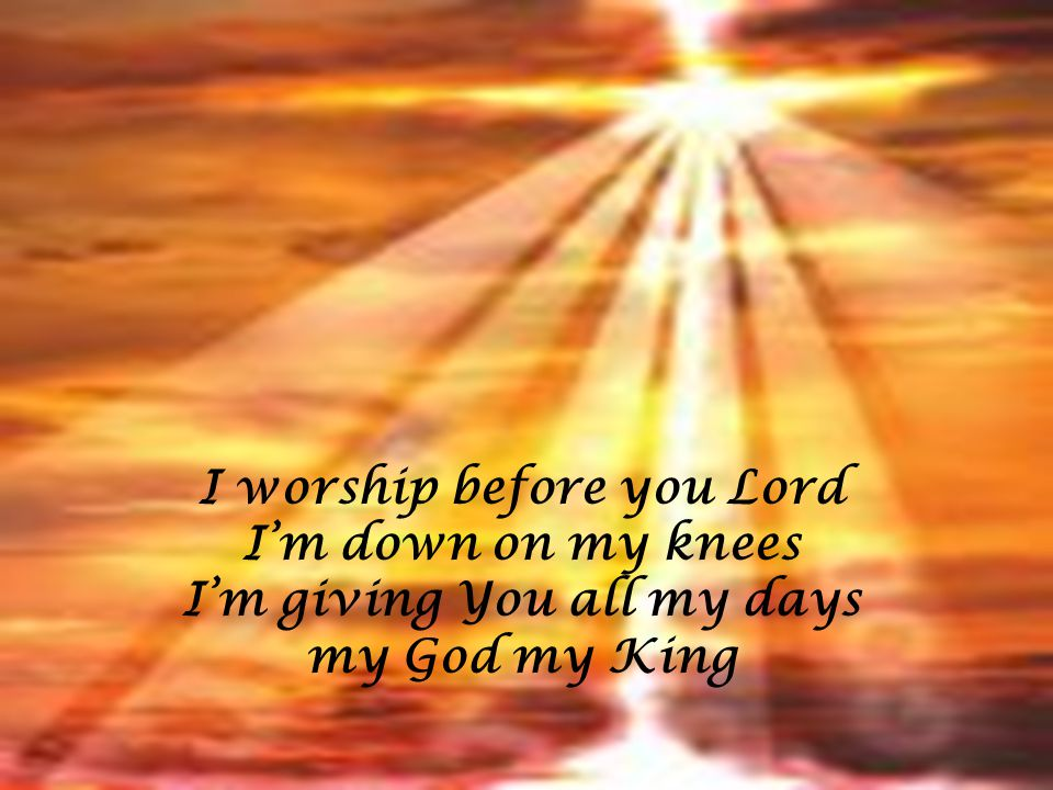 I worship before you Lord I'm down on my knees I'm giving You all my days my God my King