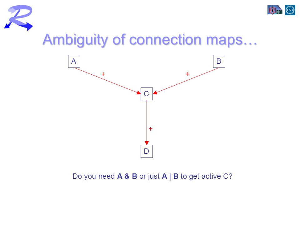 Ambiguity of connection maps… AB C D ++ + Do you need A & B or just A | B to get active C?