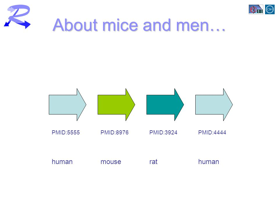 About mice and men… humanmouserathuman PMID:5555PMID:4444PMID:8976PMID:3924