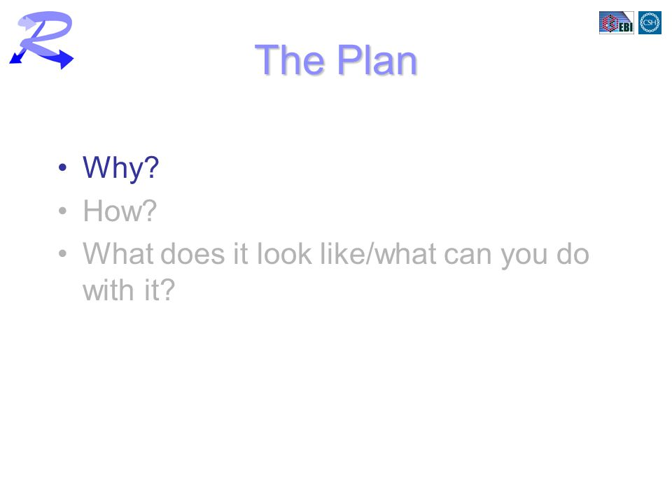 The Plan Why How What does it look like/what can you do with it