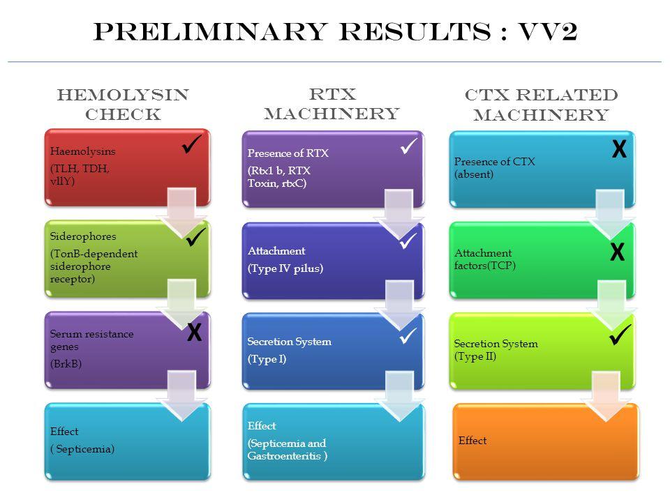 Preliminary Results : VV2 Х Х Х Hemolysin Check RTX MACHINERY CTX RELATED MACHINERY