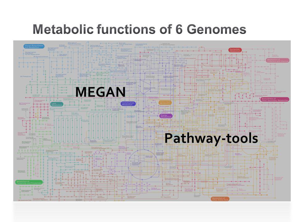 Pathway-tools MEGAN