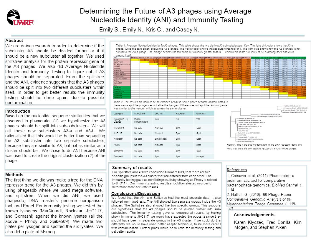Determining the Future of A3 phages using Average Nucleotide Identity (ANI) and Immunity Testing Emily S., Emily N., Kris C., and Casey N.