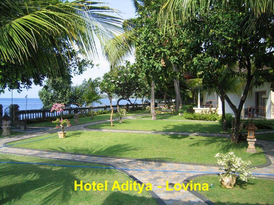Lovina - Bali