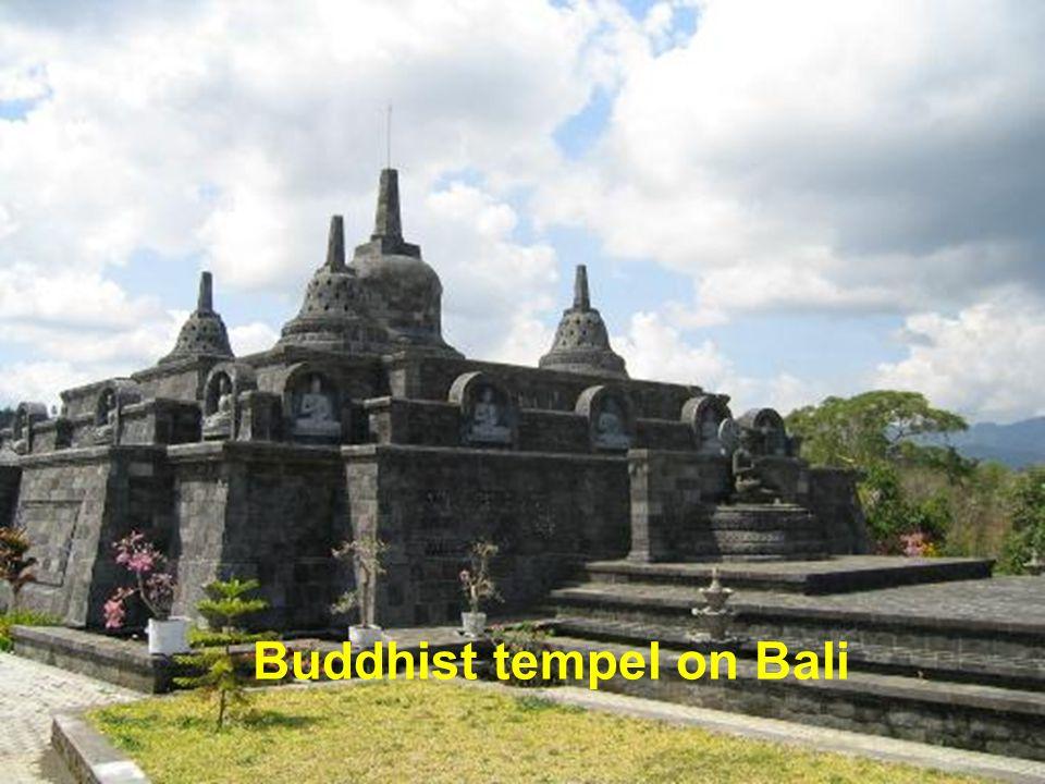 Corruption on Bali