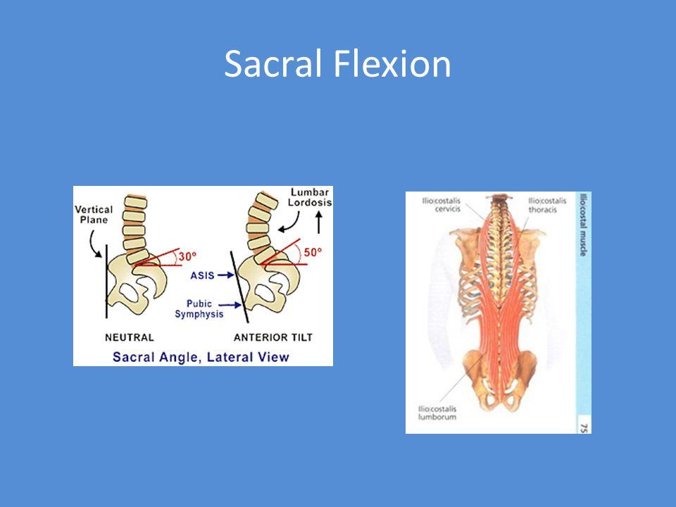 Sacral Flexion