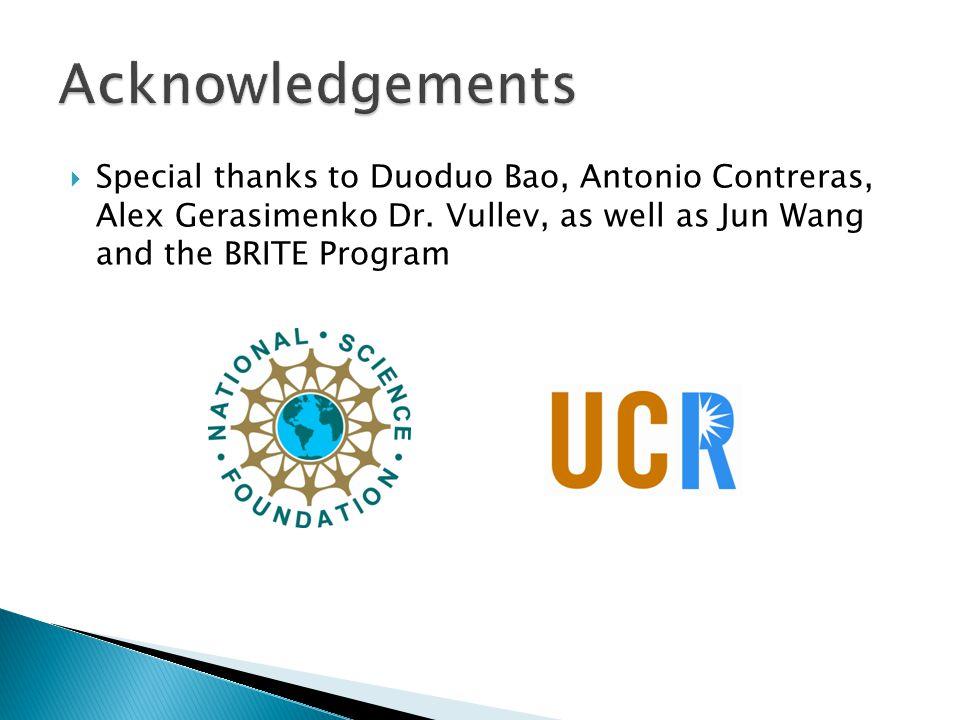  Special thanks to Duoduo Bao, Antonio Contreras, Alex Gerasimenko Dr.