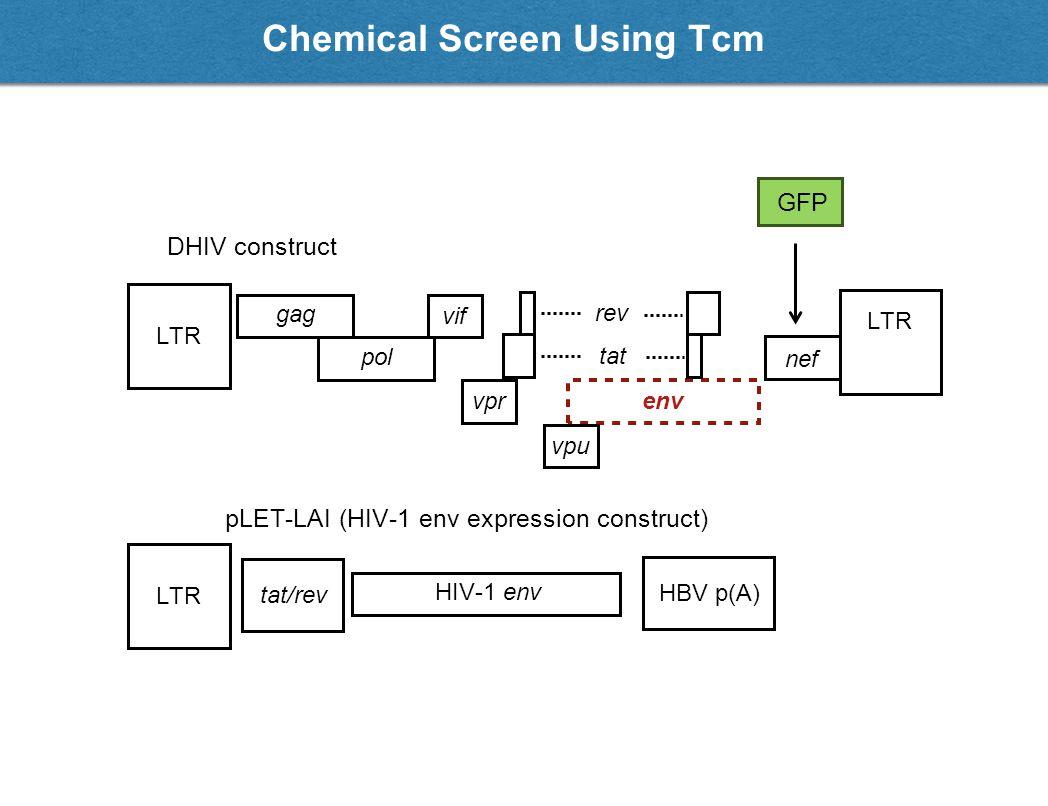 Neg. controls Pos. controls Chemical Screen Using Tcm