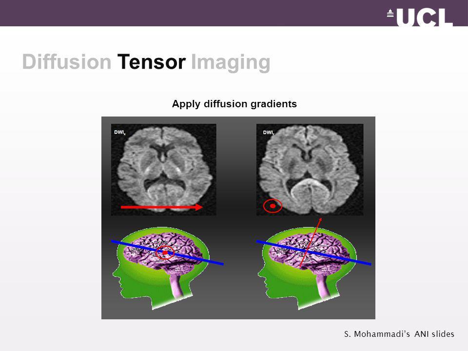 Diffusion Tensor Imaging Apply diffusion gradients S. Mohammadi's ANI slides