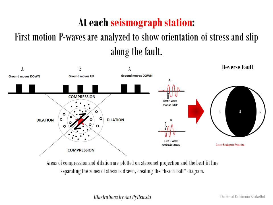 At each seismograph station: First motion P-waves are analyzed to show orientation of stress and slip along the fault. Reverse Fault ABA AA B Illustra