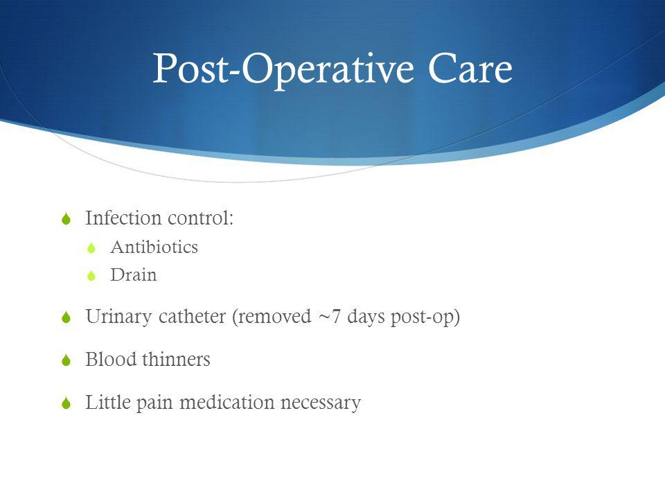 Post-Operative Care  Infection control:  Antibiotics  Drain  Urinary catheter (removed ~7 days post-op)  Blood thinners  Little pain medication necessary