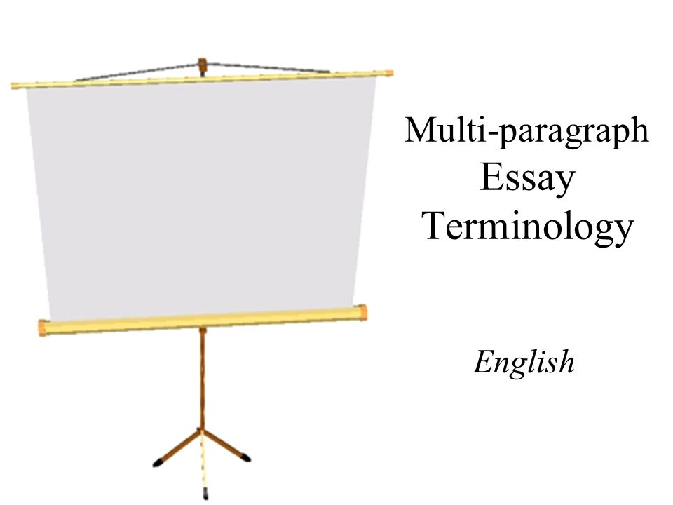 Multi-paragraph Essay Terminology English