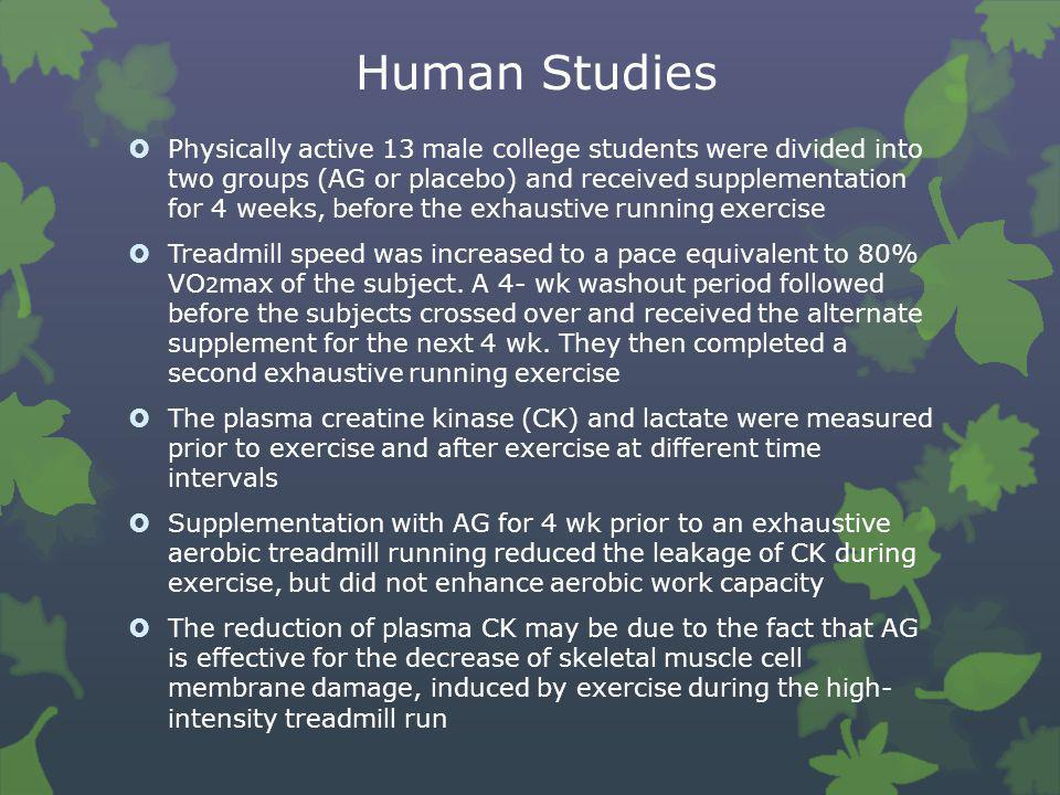 Human Studies  Physically active 13 male college students were divided into two groups (AG or placebo) and received supplementation for 4 weeks, befo