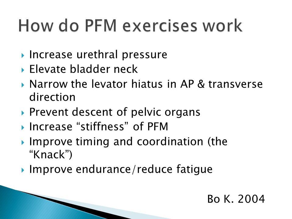  Increase urethral pressure  Elevate bladder neck  Narrow the levator hiatus in AP & transverse direction  Prevent descent of pelvic organs  Incr