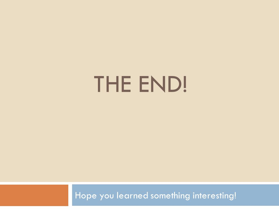 THE END! Hope you learned something interesting!