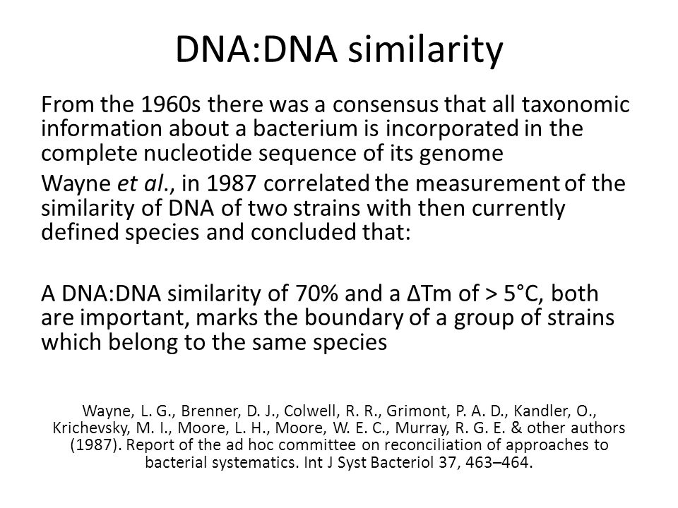 DNA:DNA similarity From the 1960s there was a consensus that all taxonomic information about a bacterium is incorporated in the complete nucleotide sequence of its genome Wayne et al., in 1987 correlated the measurement of the similarity of DNA of two strains with then currently defined species and concluded that: A DNA:DNA similarity of 70% and a ΔTm of > 5°C, both are important, marks the boundary of a group of strains which belong to the same species Wayne, L.