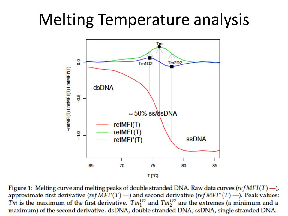 Melting Temperature analysis