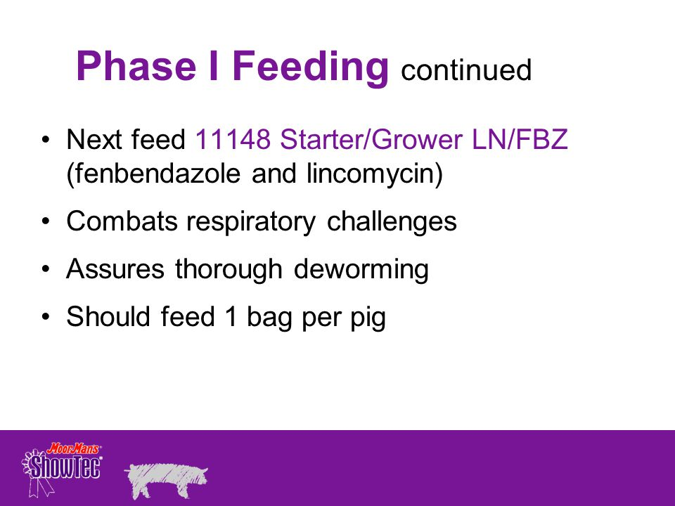Next feed 11148 Starter/Grower LN/FBZ (fenbendazole and lincomycin) Combats respiratory challenges Assures thorough deworming Should feed 1 bag per pig Phase I Feeding continued