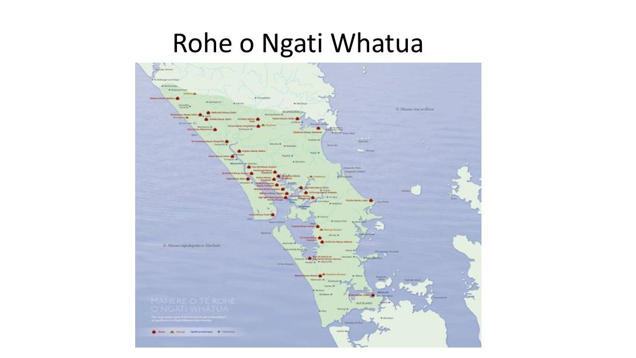 Te Runanga o Ngati Whatua (TROW)  The Runanga has progressed the iwi claims of Ngati Whatua through Wai 303 since 1992  It proposes to negotiate the partial settlement of other claims including Wai 745  The traditional northern boundary of TROW is defined as Manaia titiro ki Whatitiri, Whatitiri titiro ki Tutamoe, Tutamoe titiro ki Maunganui  The 19 hapu of Ngati Whatua as set out in the Charter of TROW include Patuharakeke  Of note, Te Roroa and Te Uri o Hau who are hapu of TROW, have achieved direct settlement