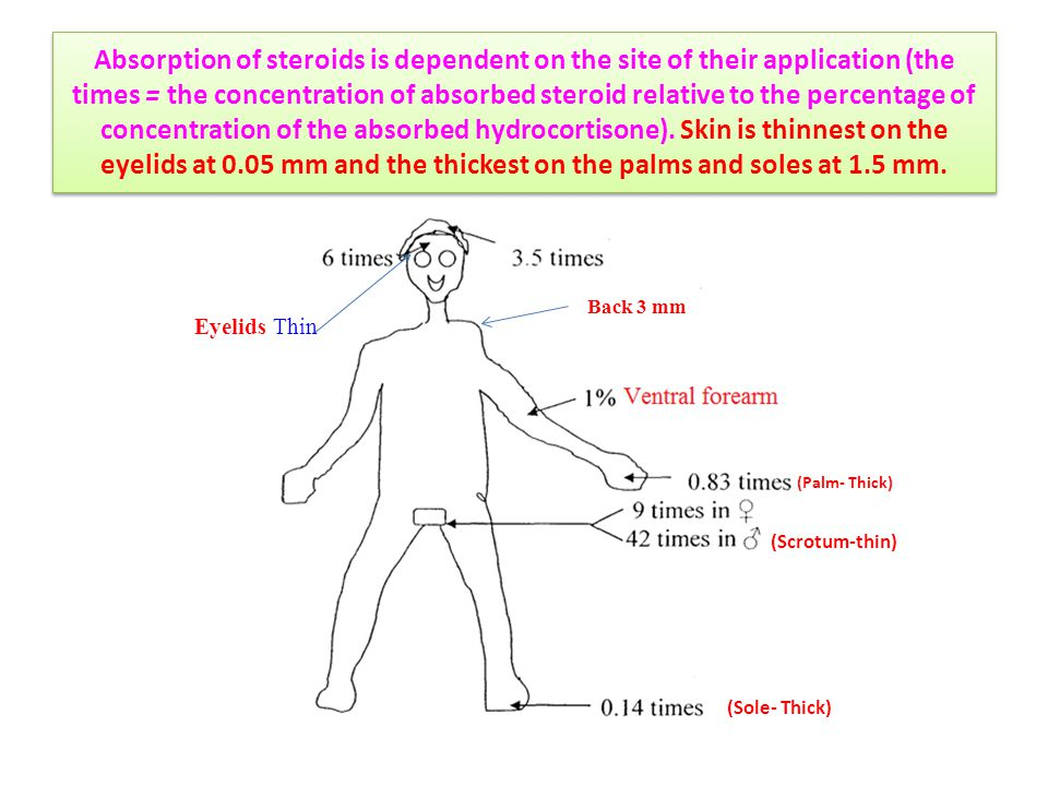 Absorption of steroids is dependent on the site of their application (the times = the concentration of absorbed steroid relative to the percentage of
