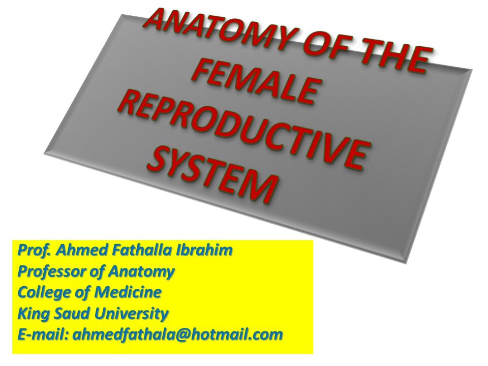 OBJECTIVES At the end of the lecture, students should:  List the organs of female reproductive system.