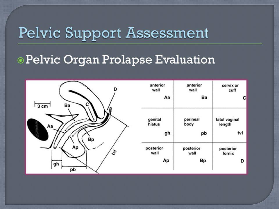 Pelvic Organ Prolapse Evaluation