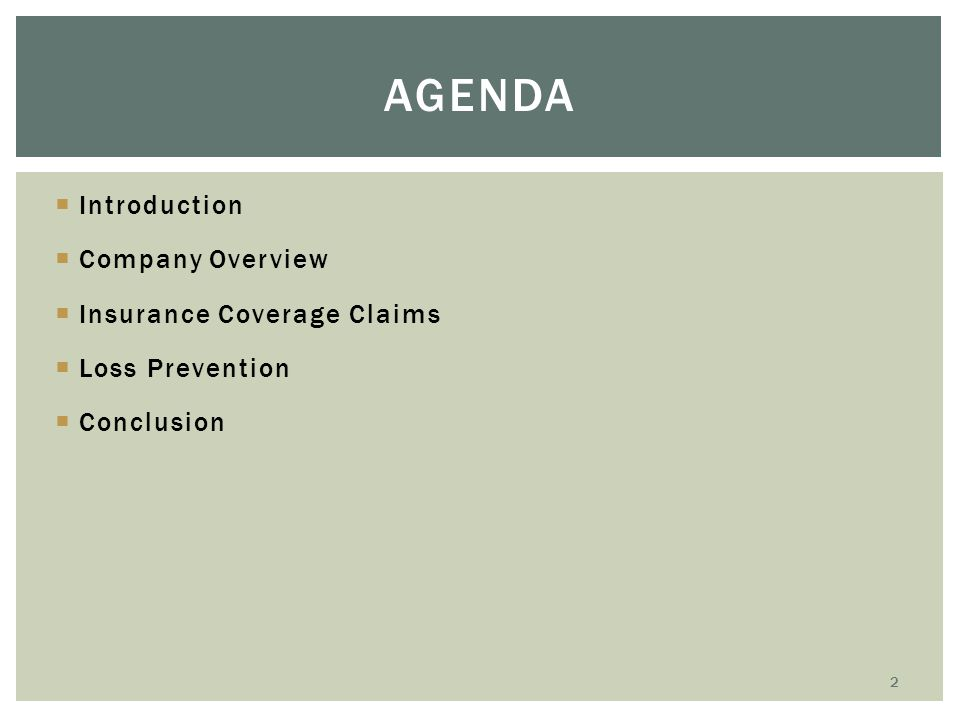  Introduction  Company Overview  Insurance Coverage Claims  Loss Prevention  Conclusion AGENDA 2