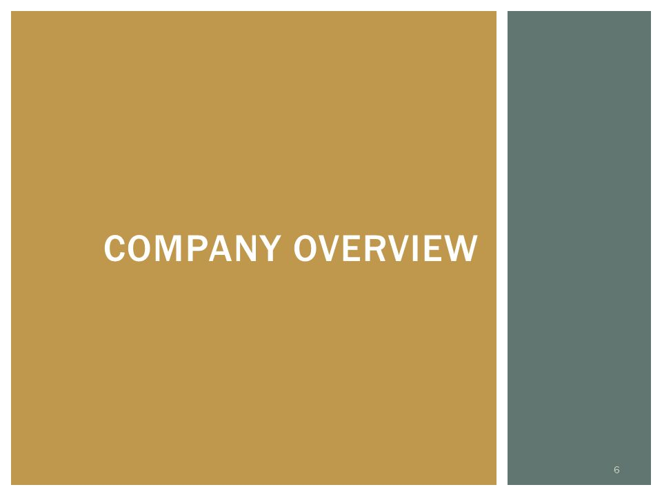 COMPANY OVERVIEW 6