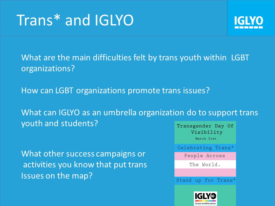 Trans* and IGLYO What are the main difficulties felt by trans youth within LGBT organizations.