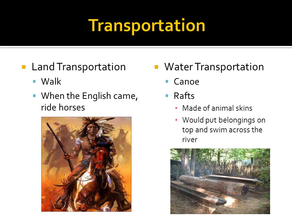  Land Transportation  Walk  When the English came, ride horses  Water Transportation  Canoe  Rafts ▪ Made of animal skins ▪ Would put belongings on top and swim across the river