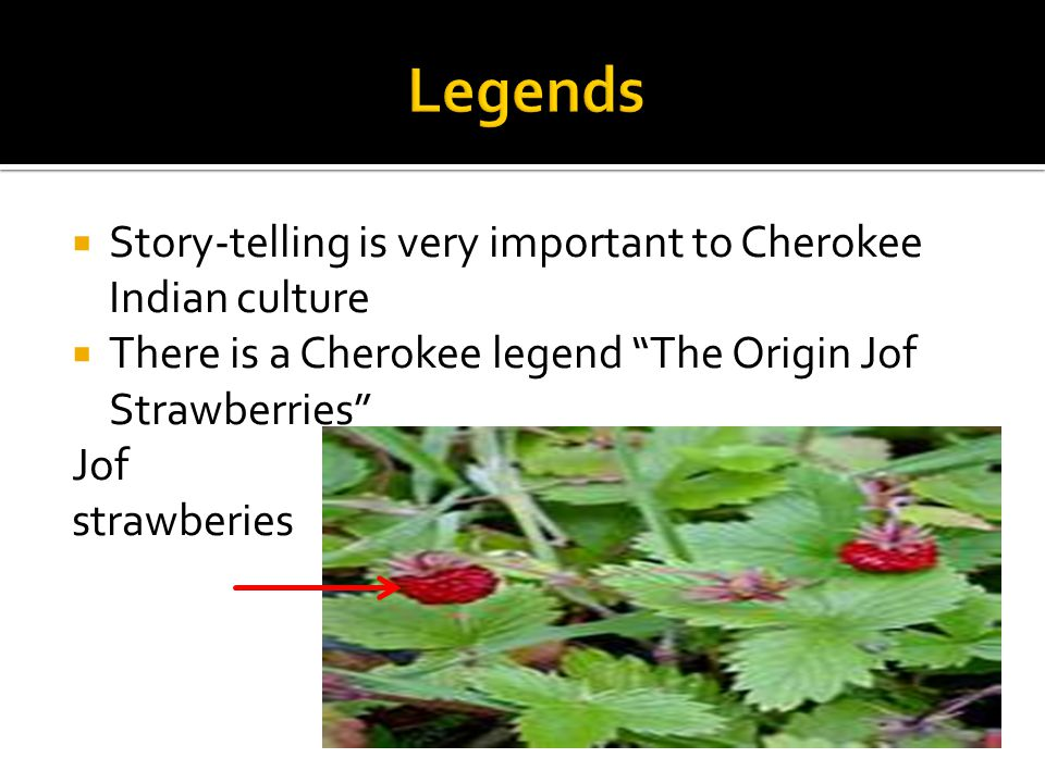  Story-telling is very important to Cherokee Indian culture  There is a Cherokee legend The Origin Jof Strawberries Jof strawberies