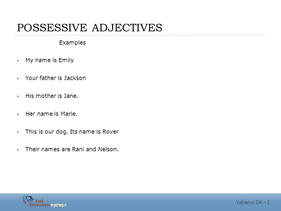 POSSESSIVE ADJECTIVES Examples  My name is Emily  Your father is Jackson  His mother is Jane.