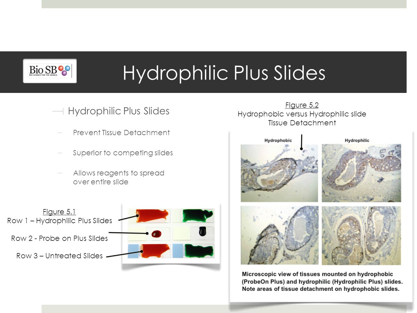 Hydrophilic Plus Slides Prevent Tissue Detachment Superior to competing slides Allows reagents to spread over entire slide Figure 5.1 Row 1 – Hydrophilic Plus Slides Row 2 - Probe on Plus Slides Row 3 – Untreated Slides Figure 5.2 Hydrophobic versus Hydrophilic slide Tissue Detachment