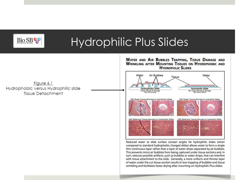 Hydrophilic Plus Slides Figure 6.1 Hydrophobic versus Hydrophilic slide Tissue Detachment