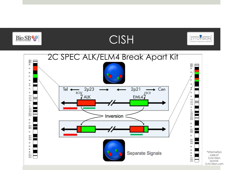 CISH *Information care of ZytoVision source: ZytoVision.com 2C SPEC ALK/ELM4 Break Apart Kit