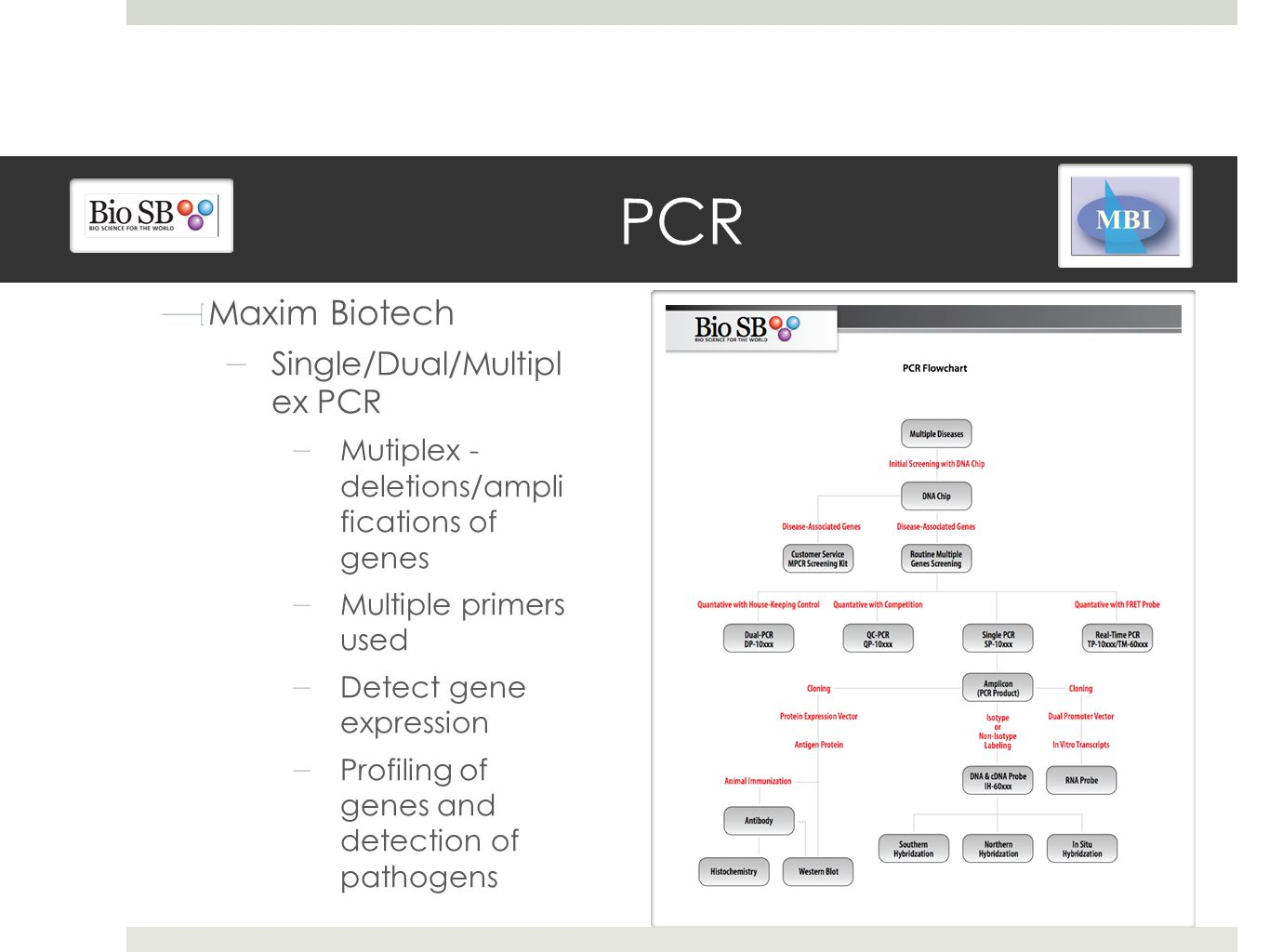 PCR Maxim Biotech Single/Dual/Multipl ex PCR Mutiplex - deletions/ampli fications of genes Multiple primers used Detect gene expression Profiling of genes and detection of pathogens