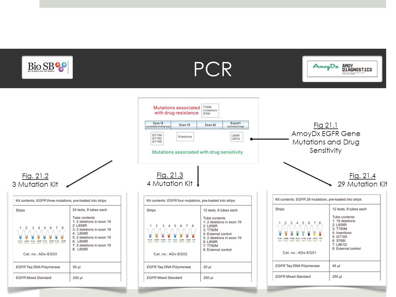 PCR Fig 21.1 AmoyDx EGFR Gene Mutations and Drug Sensitivity Fig.