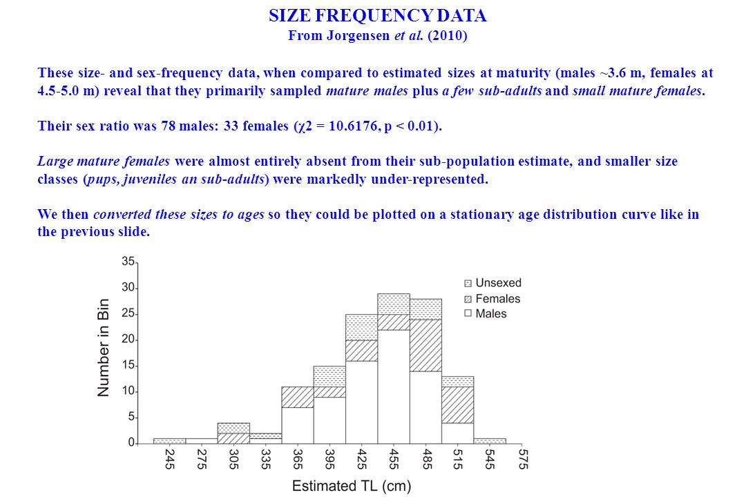 SIZE FREQUENCY DATA From Jorgensen et al. (2010) These size- and sex-frequency data, when compared to estimated sizes at maturity (males ~3.6 m, femal